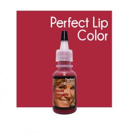 Custom Cosmetic Colors - Perfect Lip Color